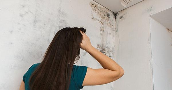 Schimmel Im Badezimmer Mietminderung   Mietminderung Wann Und Wie Mieter Den Zins Mindern Konnen
