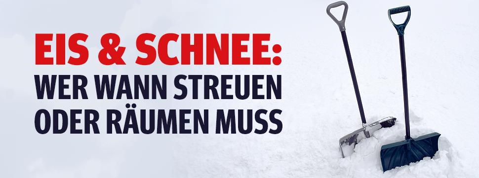 Die Mietervereinigung österreichs über 100 Jahre Mieterschutz